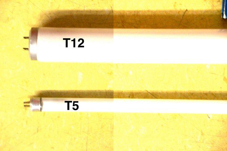 Les lampes fluorescentes sont les lampes horticoles les plus faciles à utiliser pour les débutants et aussi les moins cher. Il suffit de suspendre une lampe fluorescente environ 15 à 30 cm au-dessu...