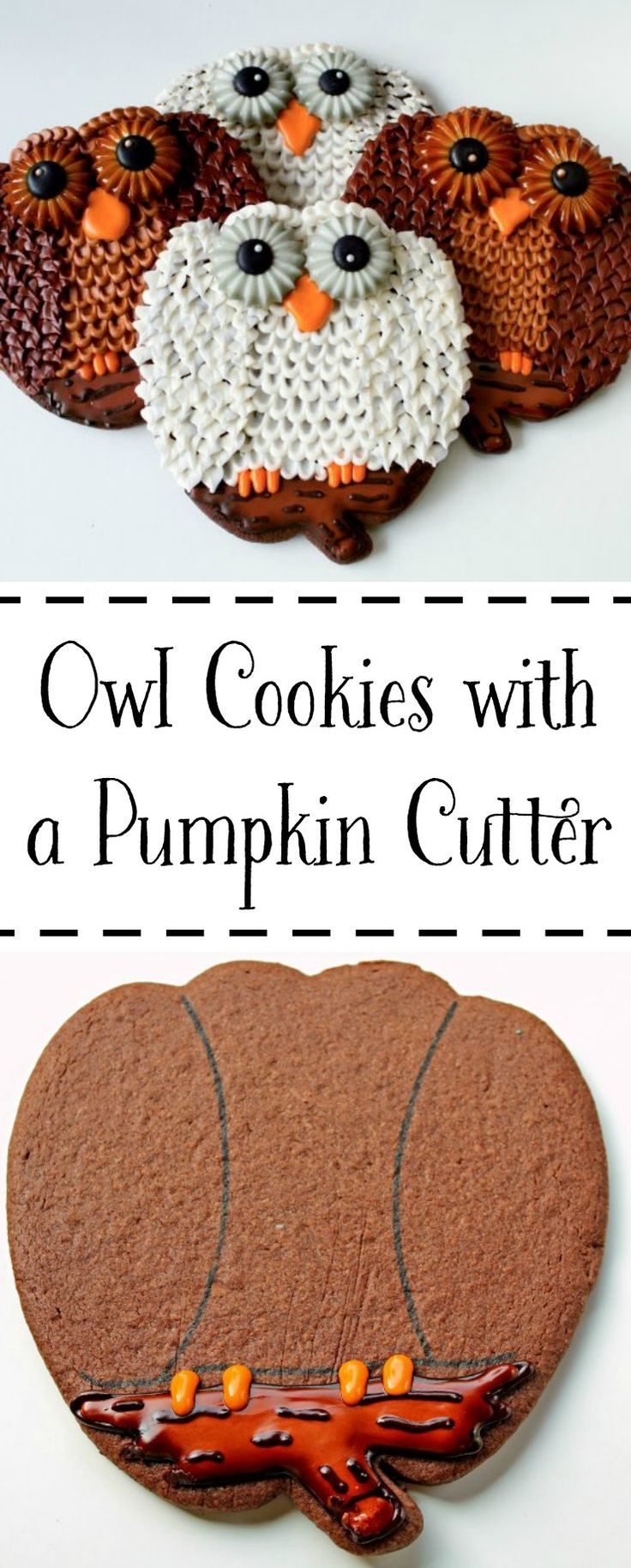 Make this Cute Owl Cookie by Using the Pumpkin Cookie Cutter | The Bearfoot Baker