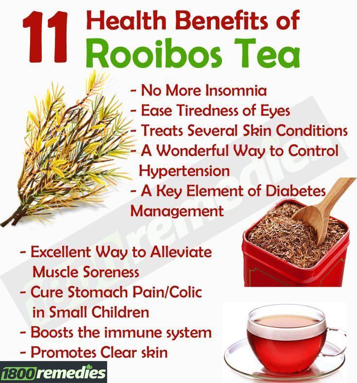 11 health benefits of rooibos tea (digestion, skin, insomnia, diabetes, eyes, so…