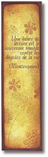 SIGNET CITATION - Une heure de lecture est le souverain remède contre le dégoût de la vie. Montesquieu.