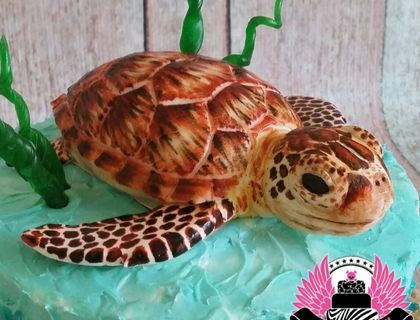 246 best Turtle Cakes images on Pinterest Turtle cakes Biscuits