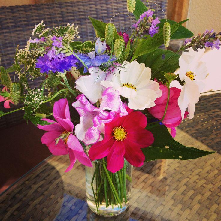 #beautiful #English #summer #flowers
