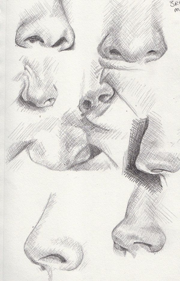 Line Drawing Nose : Best images about drawing noses on pinterest mouths