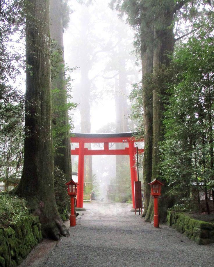 Mornings in Hakone