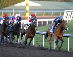 Atlarını Yarış aslında bahis taraftarla video oyunları daha fazla zevk almak için sırayla bir yasal faaliyet olarak ilan edildiği bir uzun koşu spor olmuştur.