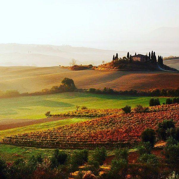 La #toscana  en #Italia tierra de vinos. #viajar #viajero #travelgram #awesometravel #trip #holidays #vacaciones #escapada #lowcost #wanderlust #travelgram #visit #visita #cities #ciudades #rtw #travel #oferta #vino #wine #italy #toscany #countryside #campo #atardecer by awesometravel_es