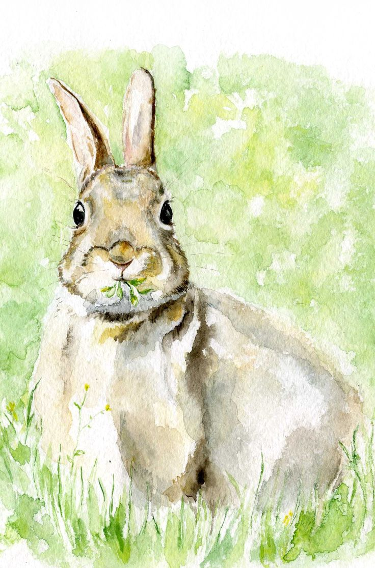 Easter Bunny Watercolor Woodland Nursery Hare Painting