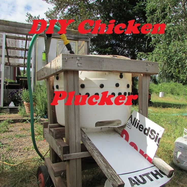 This is a overview of my wizbang style chicken plucker. I looked at a lot of designs from washing machine modifications to power drill models and with all th...