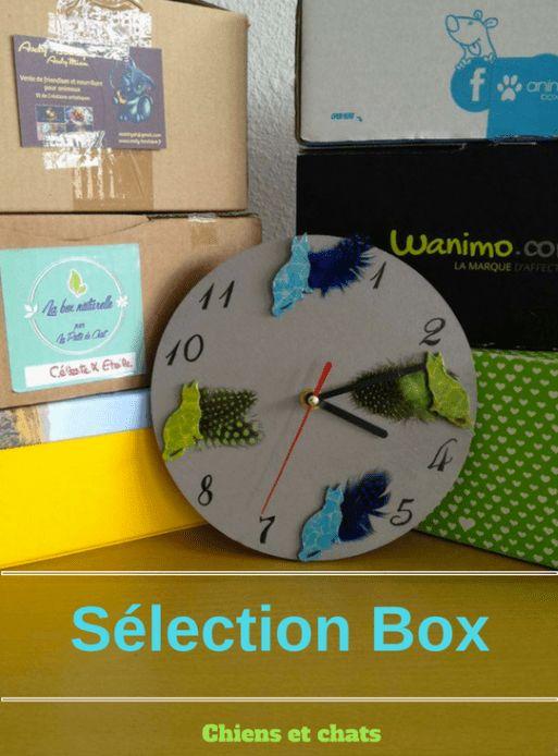 sélection box chien et chat quelle box choisir pour son animal? #chat #animauxdecompagnie #chien