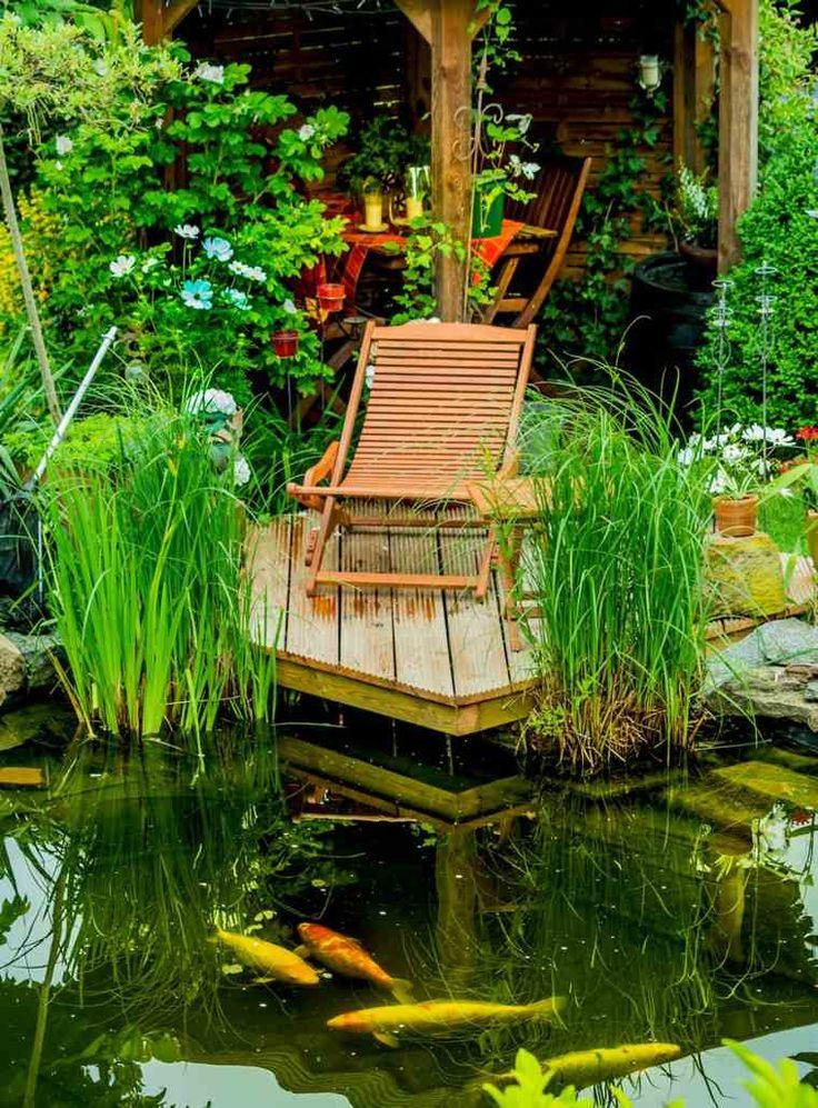 Jardins aquatiques 101 idées de bassins et de fontaines extérieurs