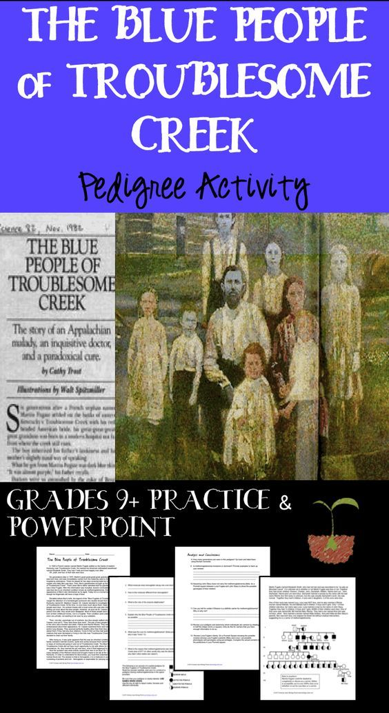 Harry Potter Classroom: Pedigree Practice- The Blue People Pedigree Activity