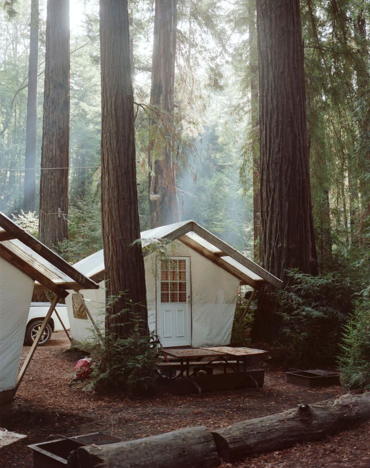 tent cabins, redwoods, california | travel desinations in the united states + glampimg #adventure
