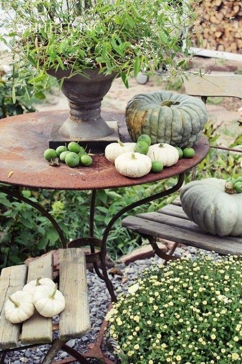 Buitenleven   Genieten van jouw herfst tuin