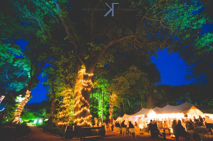 Beloftebos_wedding_photographer131