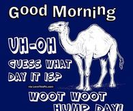 Good Morning Uh Oh Guess What Day It Is Hump Day