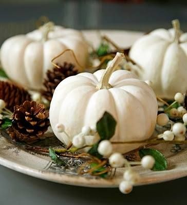 White pumpkins, Pinecones, and Berries