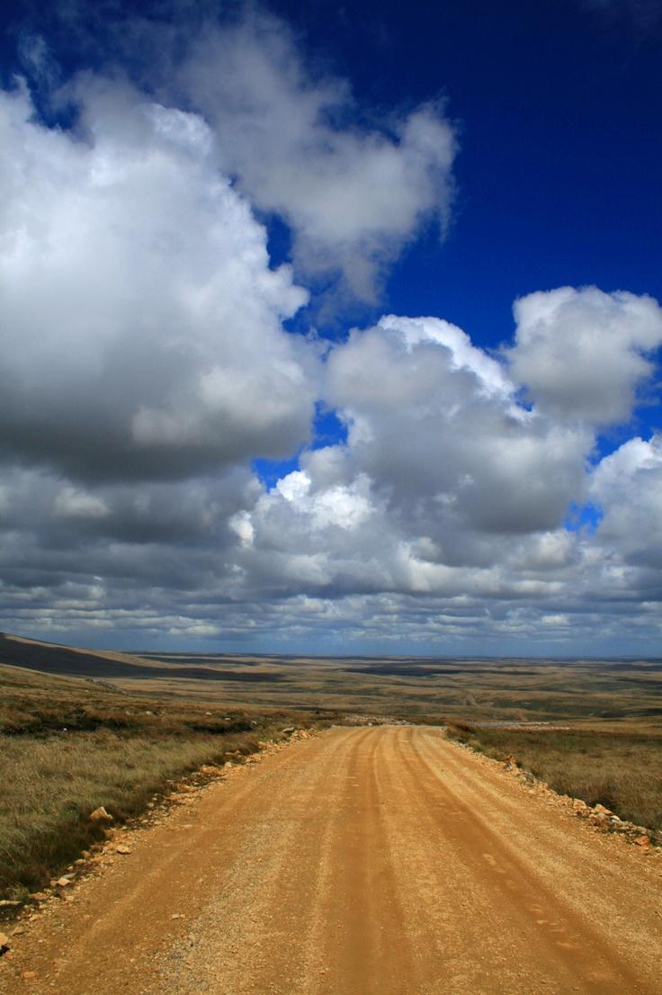 Falkland Islands #greatwalker