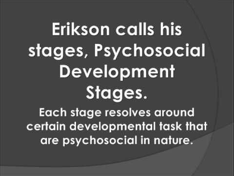american beauty and erik eriksons developmental After viewing american beauty (1999), address the following questions: 1) how  can the main  be viewed from a biological, cognitive, and psychosocial  perspective  based on erikson's theory, the parents are in middle adulthood,  both.