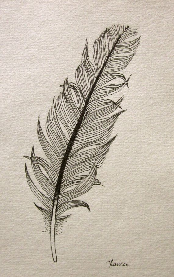 messy black feather  original ink drawing by anne4bags