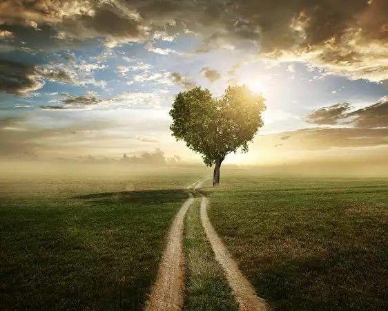 love is the way www.geespot.gr