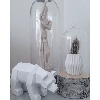 cactus stolp - Google Search