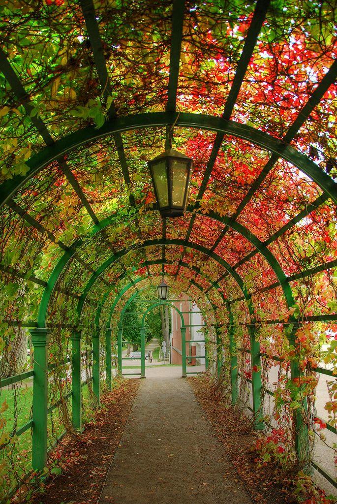 Túnel en los jardines de Palacio Kadriorg en Tallinn, Estonia