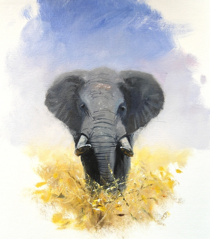 Oils instructional video lesson: African Elephant by Pip McGarry at ArtTutor.com
