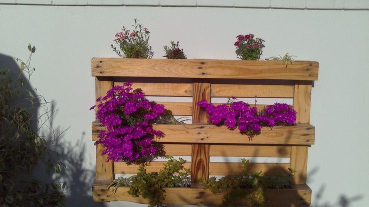 Jardinera para colgar con tramiento tapa poros y pintada en su color