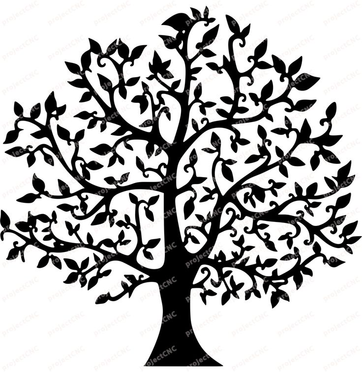 Tree Natural Ivy Frame Ornament Wall Decoration 2d Plan