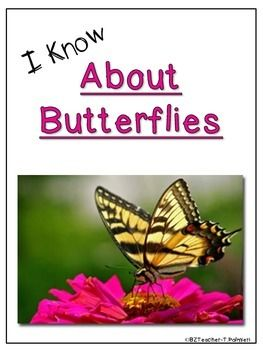 """Lap Books are a great way to help children organize the information they are learning.This Lap Book entitled """"About Butterflies"""" has all the information and pieces you will need to create the perfect project.  Included are directions for making a lap book, pages of factual information about the animal, a photo cover page, and templates, all ready to copy with no extra prep!"""