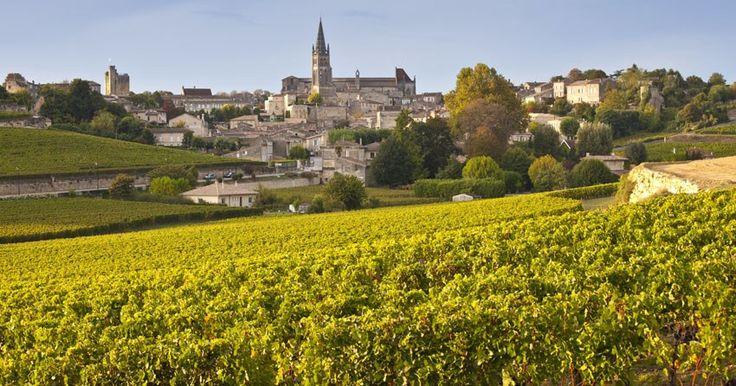 BORDEAUX, uma das regiões vitivinícolas mais famosas do Velho Mundo que fica localizada no sudoeste da França, perto da costa do Atlântico. As castas tintas mais cultivadas em Bordeaux:Cabernet Sauvignon, Cabernet Franc e Merlot, que são muito conhecidas por fazerem parte do famoso corte bordalês. Já as variedades de uvas brancas mais cultivadas na região de Bordeaux são a Sauvignon Blanc, Sémillon e Muscadelle. Acredita-se que foram os soldados romanos que plantaram as primeiras vinhas na…