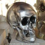 Cranio / Caveira. Raio-X de todos. ArtCunha #Artesanato em #Gesso (21) 2445-1929 e 8558-3595. #Cranio #Caveira #Caveirinha #Halloween #Festa #Festas #HeavyMetal #Craneo #Skull #Cranium #Sepultura #Morte #Muerte #Death #Decoracao #Enfeite #kvera