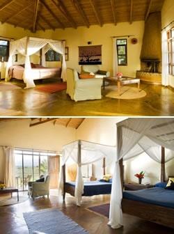 Safari 4 days $1200 each http://www.tanganyikawildernesscamps.com/african-safari-game-drives/