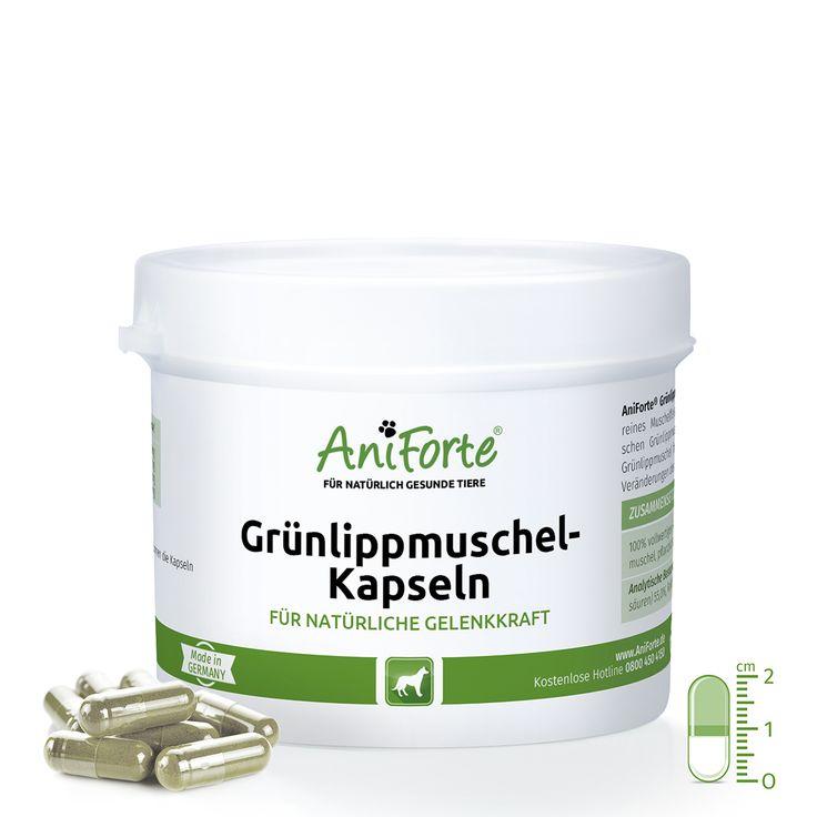AniForte® Grünlippmuschelkapseln für Hunde