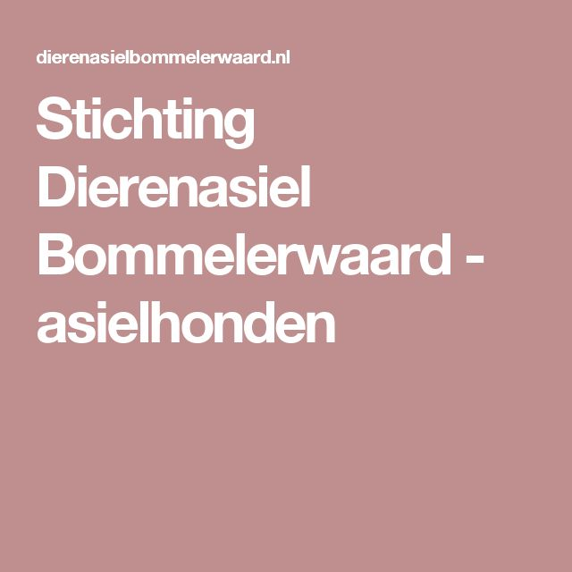 Stichting Dierenasiel Bommelerwaard - asielhonden