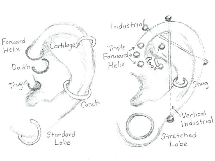 1000  ideas about ear piercing guide on pinterest