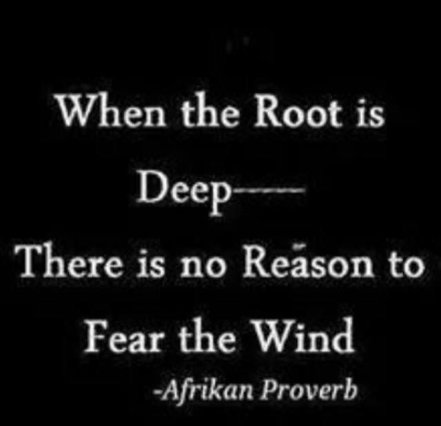 African Roots Quotes: 17 Best Images About African Proverbs On Pinterest