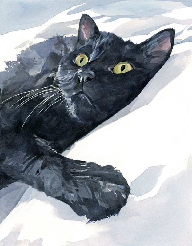 Black cat watercolor painting - Studio Tuesday Blog - David Scheirer
