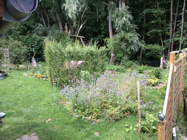 25+ лучших идей на тему «Schöner Garten в Pinterest» Патио - gartenfotos mein schoner garten