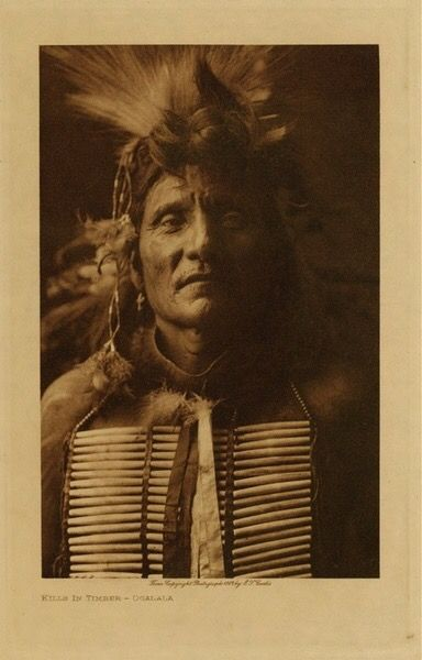 """Kills (In) Timber - Ogalala"" Дата: 1908 год. Фото Edward S. Curtis.  Valley Fine Art. Аспен, Колорадо."