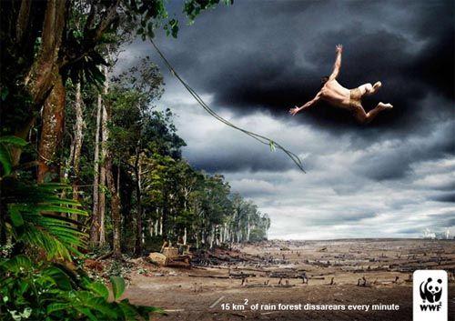 wwf deforestation tarzan environment