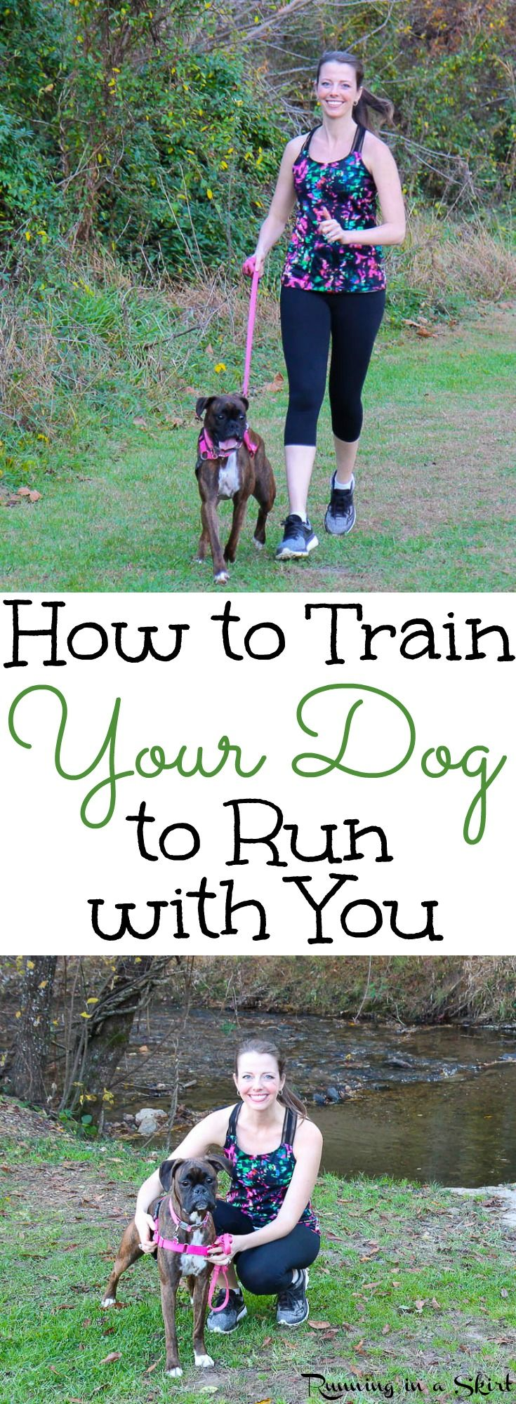 How To Train Your Dog To Run With You Including Fun And Useful