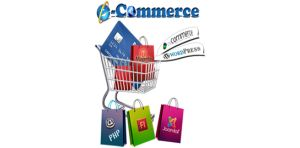 GURUJUS INFOTECH PVT LTD: E-Commerce Website Development