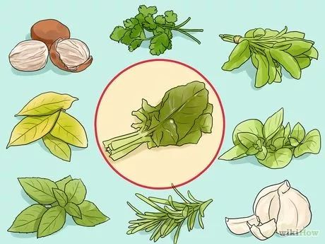 Immagine titolata Match Herbs and Spices to Vegetables Step 19