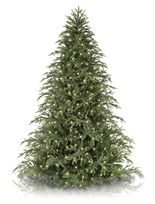 Most Realistic Artificial Christmas Trees - Balsam Hill
