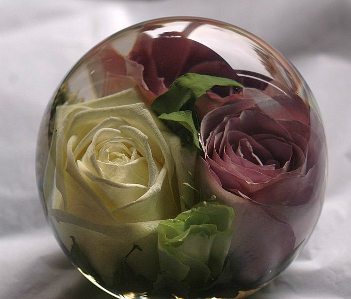 preserving bouquets weddings recent commissions flower preservation workshop roses 6762