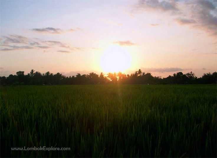 Desa Kekeri (Kekeri village), West Lombok, Indonesia. For more information, please visit www.LombokExplore.com.