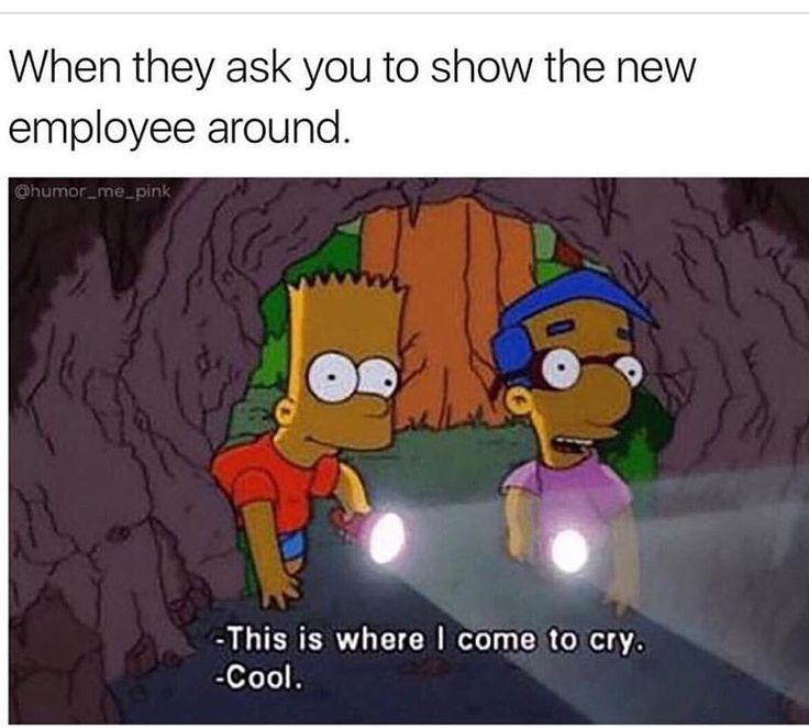 Nursing Humor                                                                                                                                                                                 More
