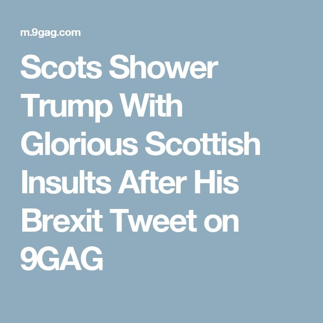 Scots Shower Trump With Glorious Scottish Insults After His Brexit Tweet on 9GAG