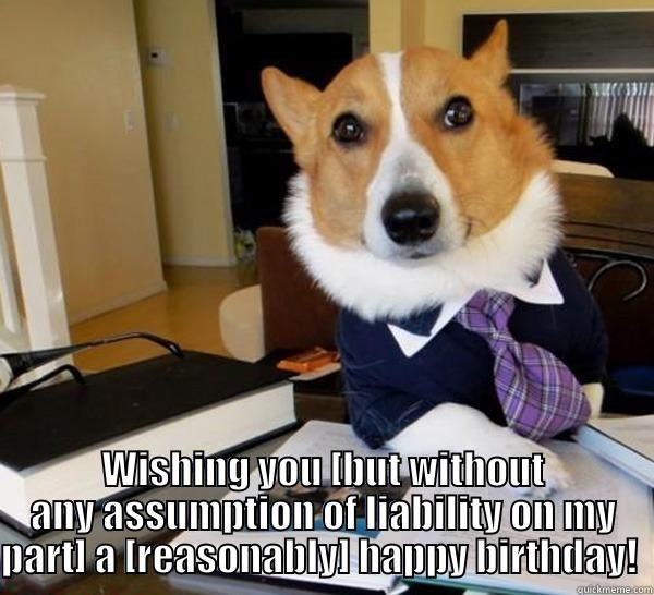 Lawyer Birthday Meme Joke Image 06 Funny Dog Memes Dog Memes Legal Humor